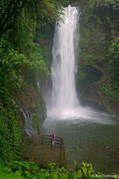 La Paz Waterfall Gardens Costa Rica by 17 Meilleures Images 224 Propos De Costa Rica Sur