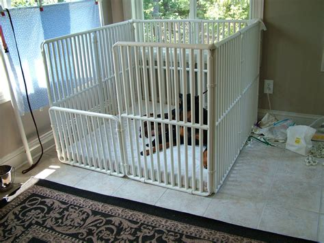 puppy cage beautiful indoor cage gallery interior design ideas angeliqueshakespeare
