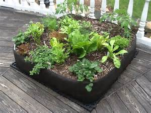 about vegetable container gardening