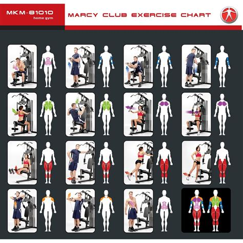 marcy home exercise chart home review