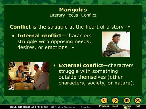 themes of the story marigolds ppt marigolds by eugenia w collier powerpoint