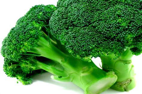 lebih sehat  brokoli health nutrition services