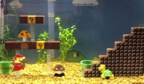 Mario Brothers Aquarium Decorations by Fish Tank Ideas Mario Bros Fish Tank
