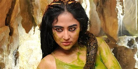 film bollywood ular dewi perssik kemesraan para selebriti bersama seekor