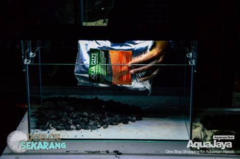 cara membuat aquascape iwagumi nano cara membuat aquascape step by step aquajaya