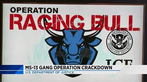 operation raging bull results   ms  arrests