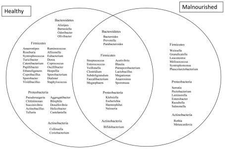 archaebacteria vs eubacteria venn diagram venn diagram showing the distribution of genera belonging