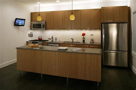 Bamboo Kitchen Design Bamboo Kitchen Cabinets Your Kitchen Design Inspirations And Appliances Quality Of Kamagra