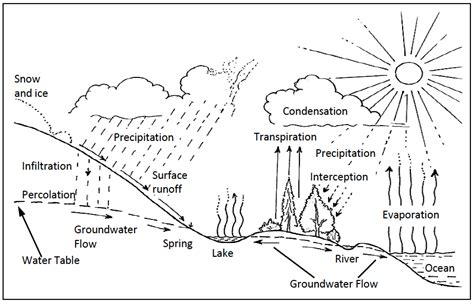 Hydrologic Cycle Worksheet collection of hydrologic cycle worksheet bluegreenish