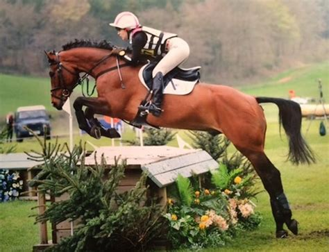 the want is strong with this one grassroots motorsports first class dressage horse strong contender for be100