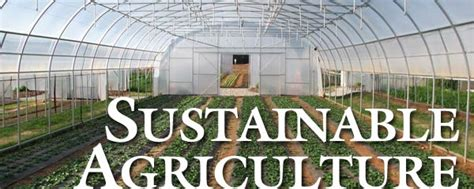 growing a sustainable city the question of agriculture utp insights books sustainable agriculture at caes uga