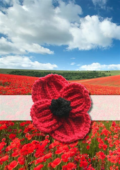 knitting pattern red poppy poppy patterns for remembrance day loveknitting blog