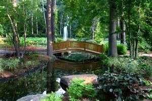 Photos Of Botanical Garden Hydrangea Garden Norfolk Botanical Garden