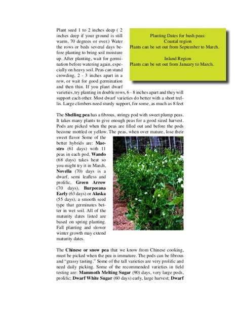 winter vegetable gardening tips for san diego county