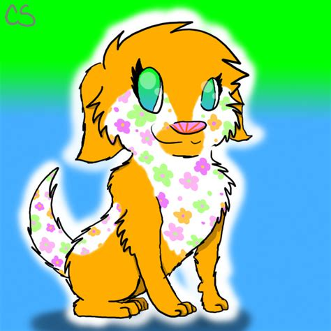 bob riposo havanese puppies image free clip free clip on clipart library