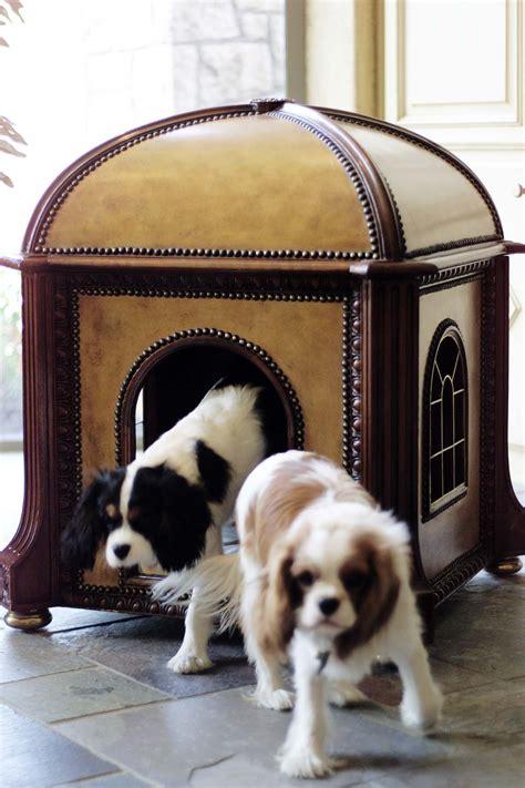 fancy dog houses fancy dog house winston the cavalier king charles