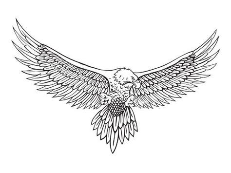 eagle tattoo line art 3d line art eagle line drawing vector material line