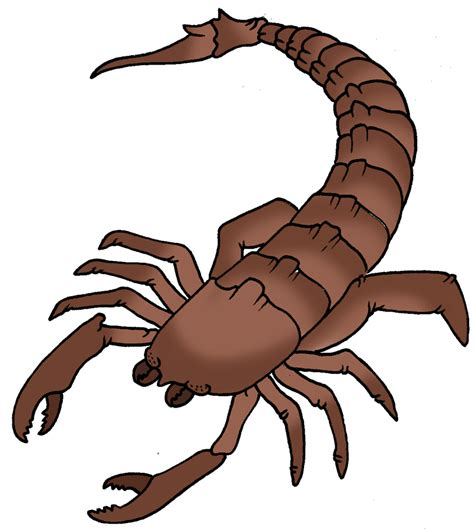 scorpion clipart scorpion clip free cliparts co