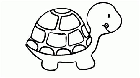 turtles coloring sea turtle coloring pages coloring home