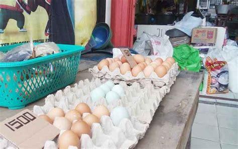 Jamu Empot Ayam Ukuran Kecil aneh stok telur ayam cukup tapi harganya naik