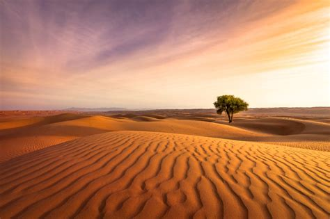 landscape photography lighting working with landscape photography lighting and its