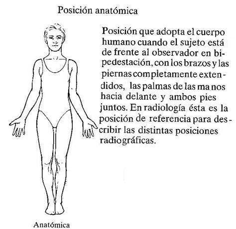 anatoma para posturas de radiologia e imagen cetis 76 posicion del paciente