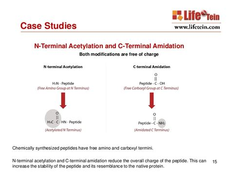 protein n terminal acetylation custom peptide synthesis services