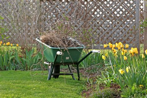 backyard cleanup 5 things to include on your yard cleanup list gnh lumber co