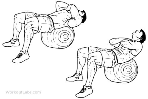 swiss ball crunch illustrated exercise guide workoutlabs
