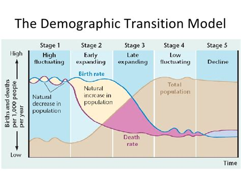 what is the name of the model on the 2014 viagra commercial the demographic tranistion model