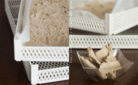 come fare il dado di carne in casa dado di carne granulare fatto in casa essiccare