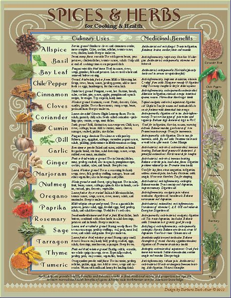 spice herb kitchen chart by amalgamarts on etsy healing herbs spices kitchen chart downloadable