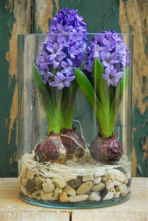 Blumen Im Einmachglas by Fr 252 Hlingsblumen 100 Faszinierende Bilder Archzine Net
