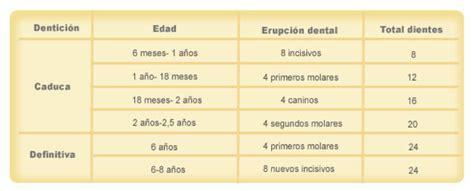 salida de dientes y diarrea el proceso de dentici 243 n en el beb 233 bebe innova s l