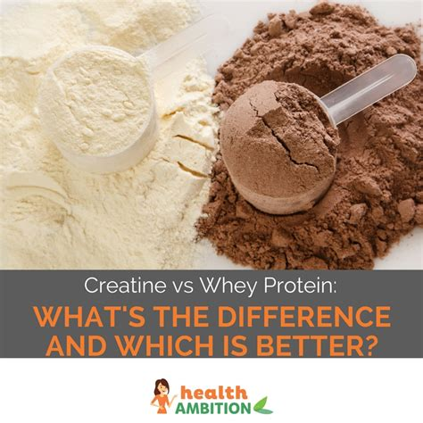 creatine or whey protein creatine vs whey protein what s the difference which is