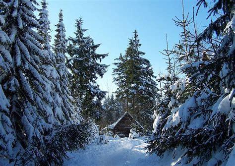einsame hütte im schnee mieten einladung bilder weihnachtsfeier 03 einsame h 252 tte im