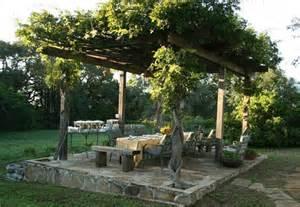 Grape Pergola by Pergola With Grape Vines Christle S Backyard Pinterest
