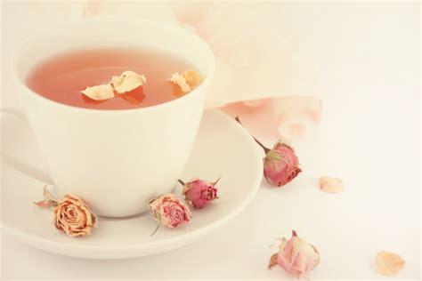 best tea to buy where to buy tea best top 10