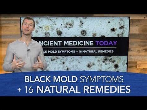 Black Mold Detox by Best 25 Black Mold Symptoms Ideas On Toxic