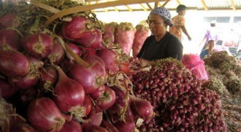 Bawang Goreng Bawangkoe Sumenep 100gr bawang merah sumenep pas dibuat bawang goreng okezone lifestyle