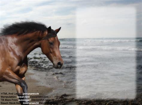 layout html howrse tb mare howrse layout by oceanlore on deviantart