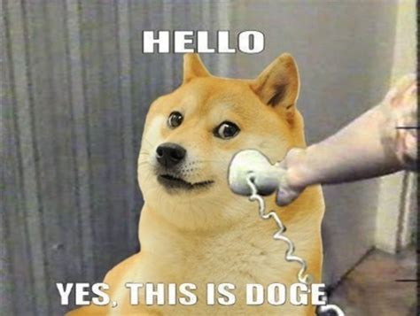 Shibe Meme Maker - who wants my invite page 5 oneplus forums