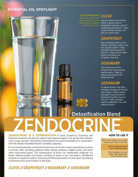 Doterra Essential Oils For Liver Detox by Doterra Zendocrine Essential Blend So Many Benefits