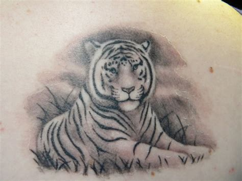 white tiger tattoos splave white tiger