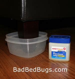 homemade bed bug interceptor bed bug dust diatomaceous earth de is a natural