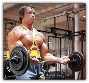 Ez Curl Bar Bench Press Back To Basics Classic Upper Body Mass Builders