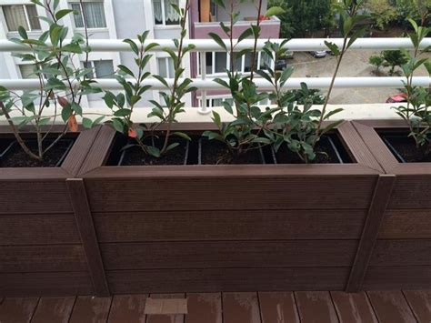 Trex Planter Box by 96 Best Images About Wpc Planter Pot Flower Box
