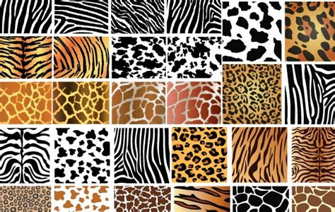 printable jungle animal patterns jungle animal pattern gallery