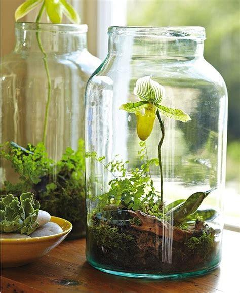 byo jar terrarium workshop on sat april 27 eye spy optical