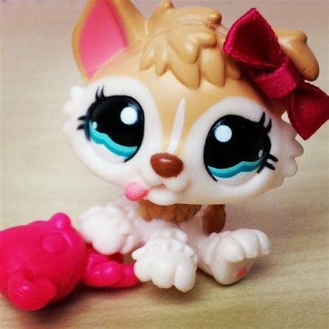 lps puppies lpshannah on instagram lps lps and puppys